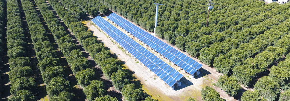 Agriculture Solar Ground Mount